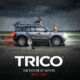 TRICO Cats and Dogs