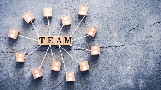Teamwork automotive aftermarket